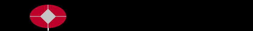 Bank for International Settlements Logo